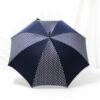 Parapluie imprimé à pois bleus